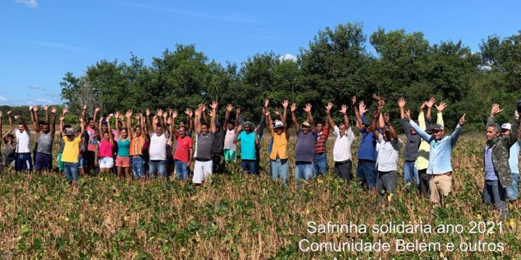 Safrinha Solidária no Maranhão: Produtores plantam feijão e comunidades carentes ficam com a produção